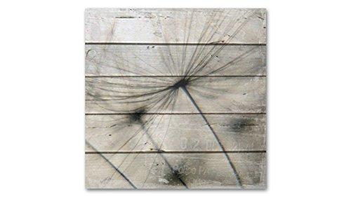 baumarkt direkt Holzbild Pusteblume, 50x50cm