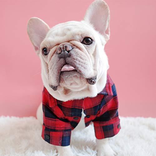 Hunde-Shirt, kariertes Hemd für Katzen und kleine Hunde, mit Polokragen, hochwertig, niedlich, schick, ideal für Halloween- und Weihnachtsoutfits YAWJ (Farbe : Rot, größe : 2XL)