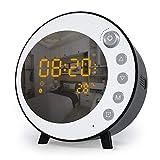 JIM'S STORE Radio Réveil Haut-Parleur Bluetooth 5.0 Thermomètre Horloge Numérique...