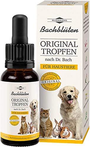 BACHBLÜTEN Original Haustier Tropfen nach Dr.Bach 10 Milliliter