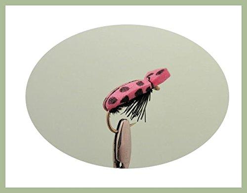 confezione-da-6-pink-lady-coleotteri-insetti-esca-per-pesca-alla-trota-misura-10