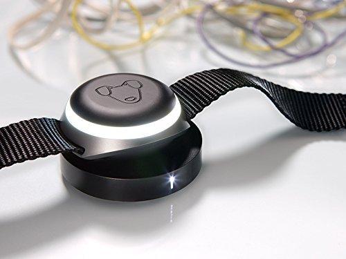Mishiko - collare localizzatore per cani i gps integrato i activity tracker i collare stiloso e robusto i diagnostica stato fisico - nero