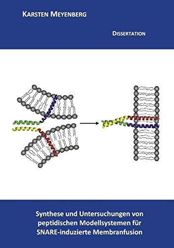 Synthese und Untersuchungen von peptidischen Modellsystemen für SNARE-induzierte Membranfusion: Dissertation