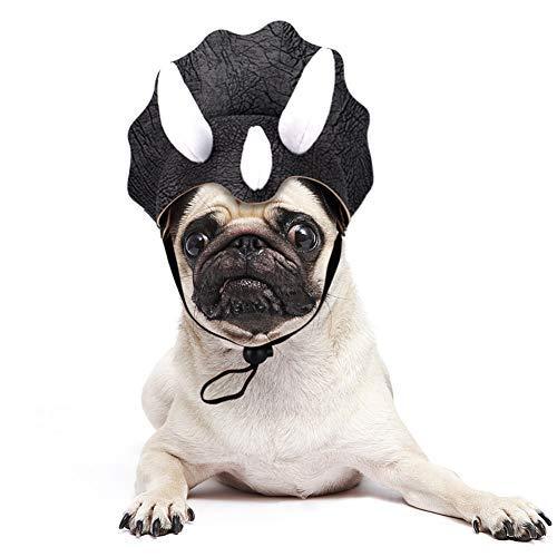 JDYW Pet Kostüm für Katze Halloween Fancy Dress up Party Outfit für Haustiere (Dinosaurier)