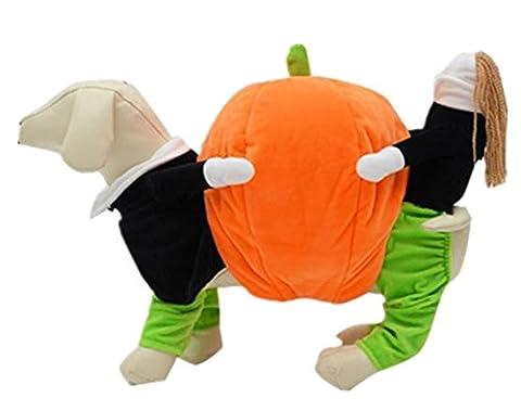 Gros Chien Costumes Pour Halloween - vêtements pour chien, Super fantaisie drôle Halloween