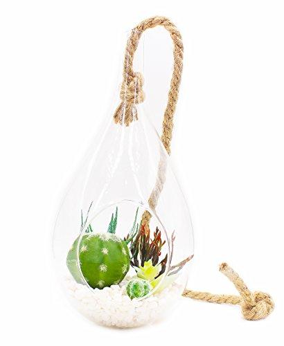 ZAZALUM Künstliche Topfpflanzen, 33cm Extra Großes Tropfenform Aufhängen Terrarium Vase mit Faux Air Pflanze-Set und Nautische Seil Home Display Dekoration, 9.4