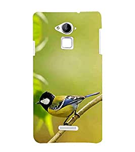 Bird, Green, Beautiful pattern, Lovely Pattern, Printed Designer Back Case Cover for Coolpad Note 3