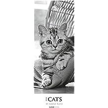 Cats 2018 - Streifenkalender XXL (25 x 70) - Tierkalender: by Sabine Rath