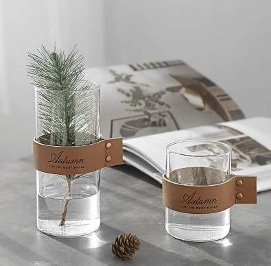 Cinturino in pelle nordica minimalista composizione floreale idroponica decorazione floreale vera vaso moderno minimalista in vetro dritto