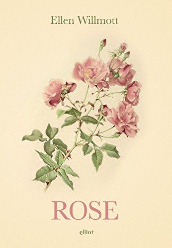 Rose pdf