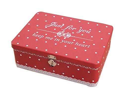 Abschließbare Eisen Box Aufbewahrungsbox Piggy Bank Insurance Box #1 -