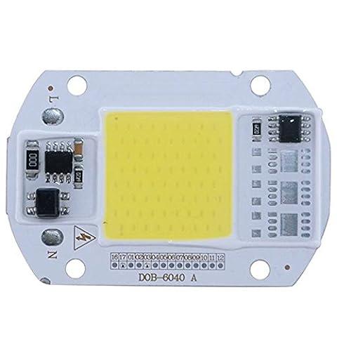 LanLan COB Chip Integrated Smart IC Driver Lamp 220V LED Floodlight White Light3020Warm White50