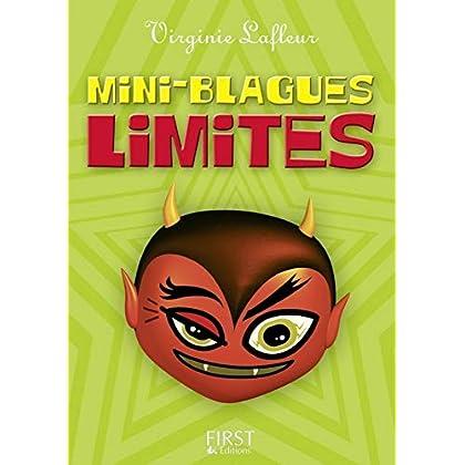 Petit livre de - Mini blagues limites (LE PETIT LIVRE)