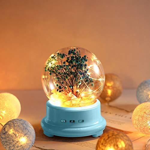 TianranRT❄ Luz Nocturna Nocturna,Lámpara de Botella Led,Flor Preservada En Vidrio Domo Bluetooth,Altavoz,Luz...