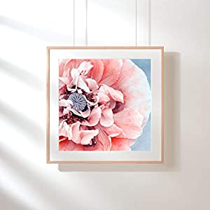 Fotografie Print Kunstdruck 12x12cm Mohnblume pastell Frühling Quadrat