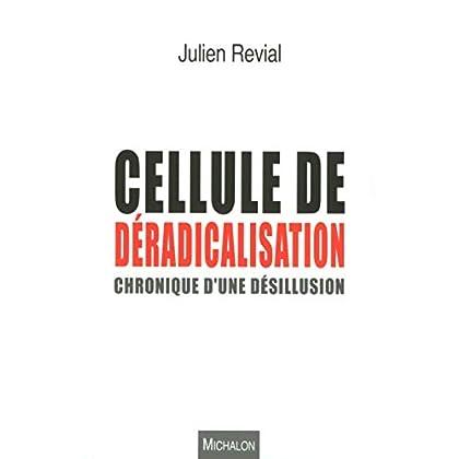 Cellule de déradicalisation : chronique d'une désillusion