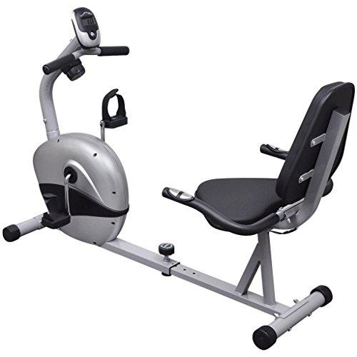 vidaXL - Bicicleta Reclinada, Estática, 3kg pulso...