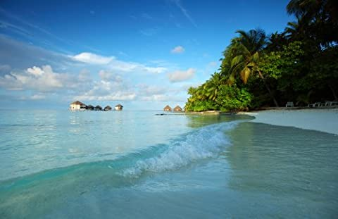 Papiertapete Foto-Tapete Traumstrand Malediven KT453 Palmen Ozean Meer Tapete Fototapete Größe: 420x270cm Kleistertapete Wandbild