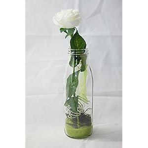 Milchflasche mit weißer Rose