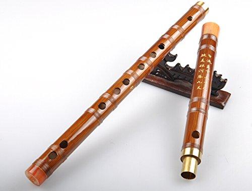 study-level-bitter-bamboo-flute-dizi-musical-instrument-2-abschnitte