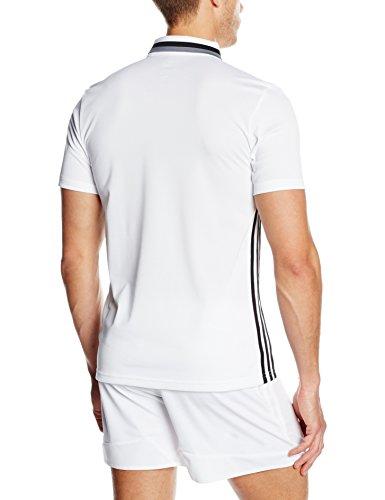 adidas Erwachsene Freizeitbekleidung CL Poloshirt white/Black/Vista grey