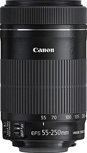 Canon Tele-Zoomobjekt. EF-S 55-250mm F/4-5,6_3