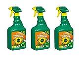 Scotts Celaflor GmbH Celaflor Rasen-Unkrautfrei Anicon 3 x Ultra Spray 750 ml