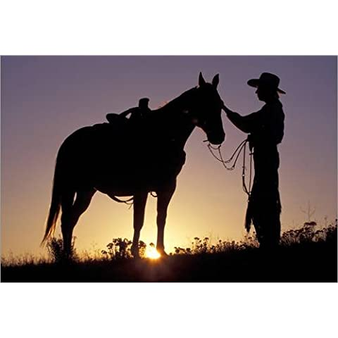 Stampa su legno 100 x 70 cm: Cowboy touched his horse's head di Darrell Gulin / Danita Delimont - Alluminio Horse Head