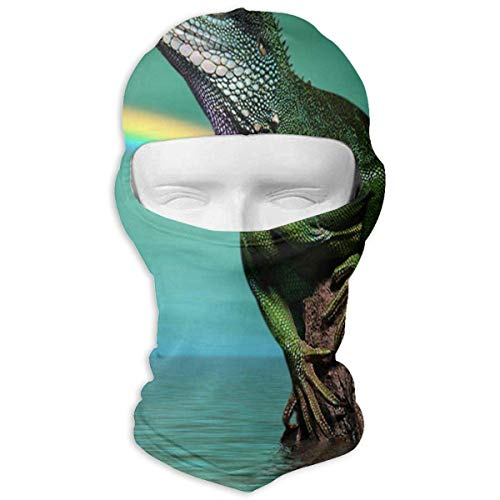 ter Lizard Rainbow Full Face Masks Ski Headwear Motorcycle Hood for Cycling Sports Hiking Unisex12 ()
