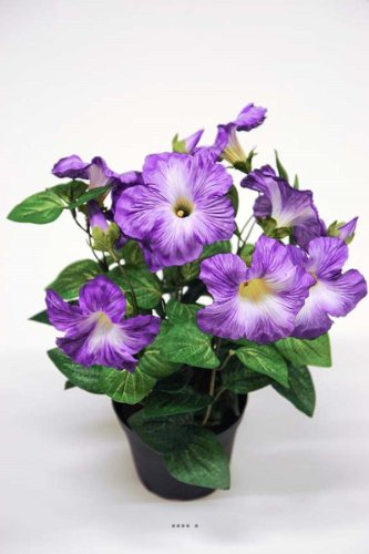 Artificiales–Petunia Artificial púrpura en maceta H 38cm 20–flores luminoso choisissez votre, colores: púrpura