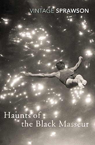 Haunts of the Black Masseur: The Swimmer as Hero (Vintage Classics)
