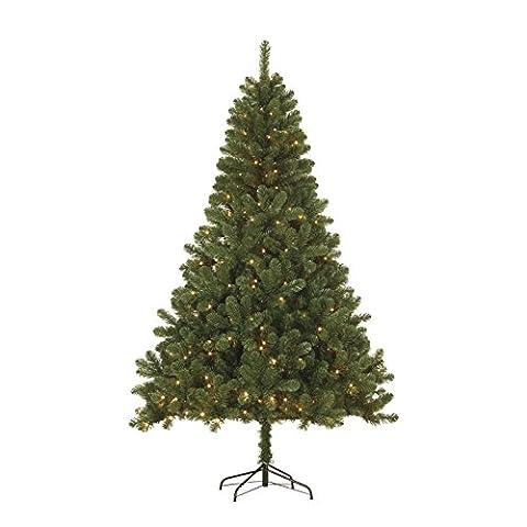 Black Box Trees 379076-02 Künstlicher Weihnachtsbaum Sapporo Beleuchtet Höhe 185 cm Durchmesser 115 cm 140 LED's, 525 Zweige, PVC Nadel, warm (Warm Weiß Led Weihnachten Tree)