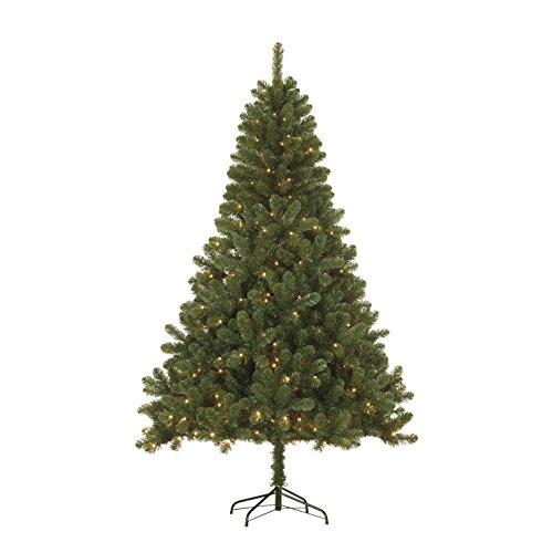 Black Box Trees 379076-02 Künstlicher Weihnachtsbaum Sapporo Beleuchtet Höhe 185 cm Durchmesser...