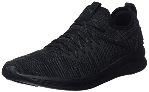 Puma Herren Ignite Flash Evoknit Cross-Trainer, Schwarz (Puma Black 05), 42 EU