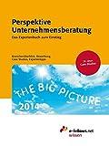 Perspektive Unternehmensberatung 2014: Das Expertenbuch zum Einstieg. Branchenüberblick, Bewerbung, Case Studies, Expertentipps (e-fellows.net-Wissen)
