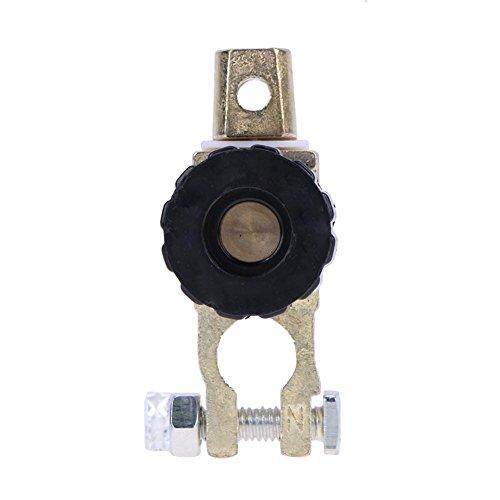 Preisvergleich Produktbild vanpower Universal Akku trennen Trennschalter Cut Off Schalter (schwarz)