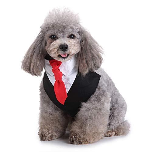 LPxdywlk Haustier Hund Welpe Hochzeit Bräutigam Smoking Fliege Anzug Bekleidung Kleidung Mode Kostüm Neu Schwarz SNone -