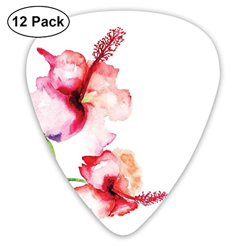 Celluloid Guitar Picks - 12 Pack,Abstract Art Colorful Designs,Hibiscus Flowers On Plain Background In Pastel Colors Nature Home Decor,For Bass Electric & Acoustic Guitars. - Hibiscus Home Decor