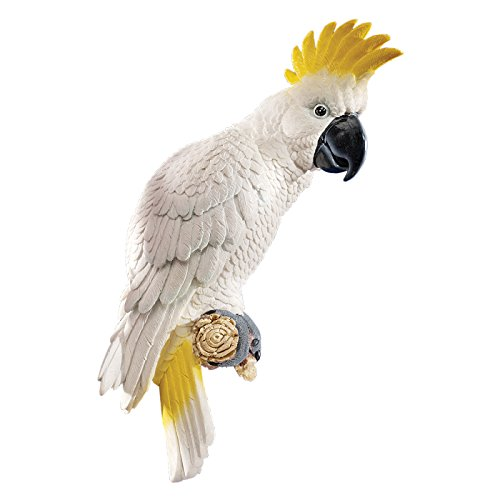 Design Toscano Wandfigur Kakadu mit gelber Haube