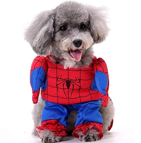 KIRALOVE   Disfraz Spiderman Hombre   Perro   L
