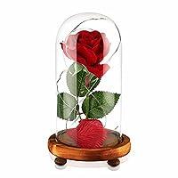 Trovi un regalo per San Valentino o qualche giorno speciale?La bella e la Bestia rosa è la tua scelta migliore per l'amore eterno.Rosso Roses, bello ed elegante, come simbolo di amore e apprezzamento per sempre, è anche un simbolo dei miglior...
