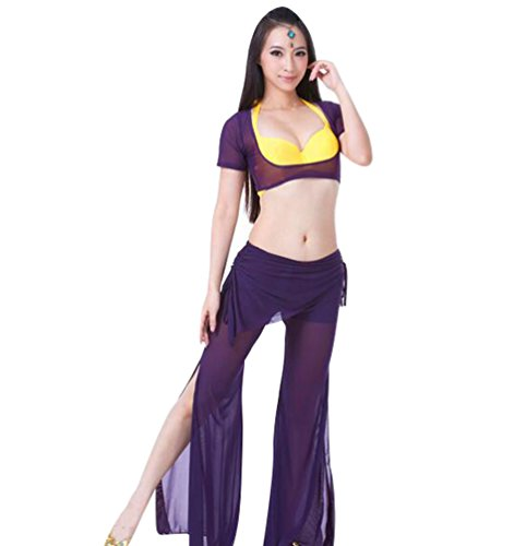 ZhiYuanAN 2Pcs Costume Danse Du Ventre Manches Courtes Tops & Pantalon Set Violet Foncé