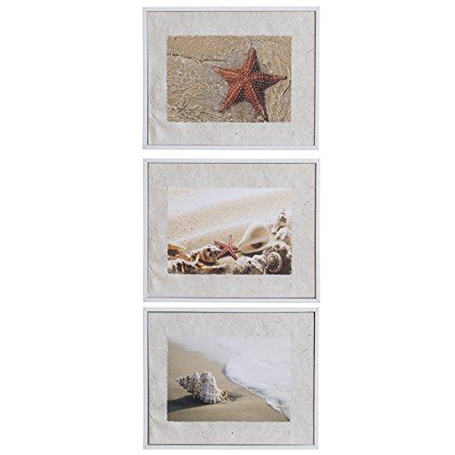 Belssia Cuadro con Diseño Romántico Vintage Caracolas, Madera, Multicolor, 27x3x22 cm, 3 Unidades