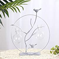 AFMGD Creative Iron Round Plant Glass Hydroponic Container Terrarium Nordic Home Decor Vase Simple Office Desktop Ornaments Craft Gift 2