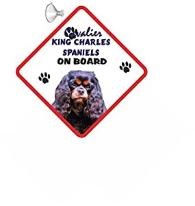 Cavalier King Charles Spaniel (Noir & Marron Clair) pour chien à suspendre Panneau de voiture avec ventouse en caoutchouc 57