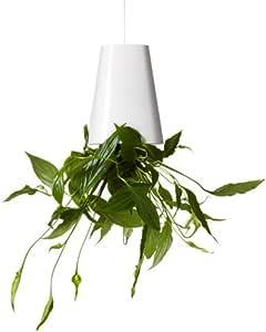 """Boskke – Vaso da Fiori """"Sky Planter Recycler"""", Misura Piccola, Colore: Bianco"""
