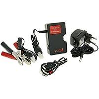 Batterie Ladegerät / Erhaltungsgerät Trainer Speeds EL300 für 12V Blei, Gel für Überwinterung Auto, Motorrad, Roller, Quad, Boot