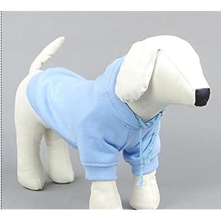 Doggie Style Store Blue Plain Casual Dog Pet Cat Hoodie Hooded Jumper Sweater Hoody Top Sweatshirt Size M 41bVJ AlwxL