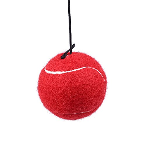 Forfar Fight Ball – Exercise Balls & Accessories