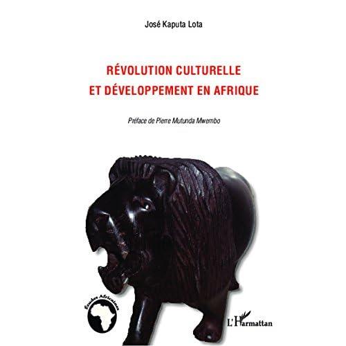 Révolution culturelle et développement en Afrique (Études africaines)